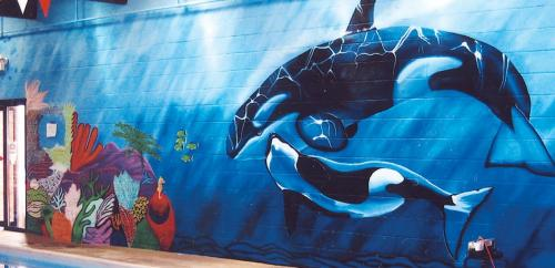 Large indoor pool wall mural at a health club